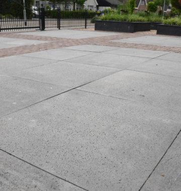 schellevis betontegel